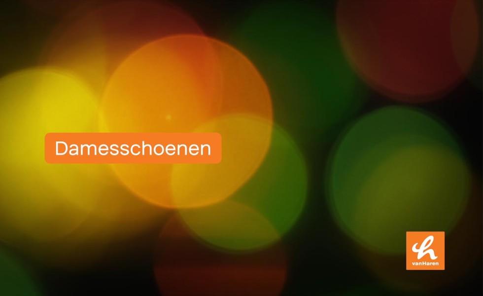 Van Haren | Revolve